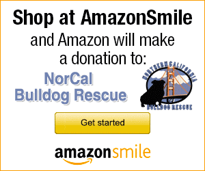 Shop at Amazon to help Northern California Bulldog Rescue