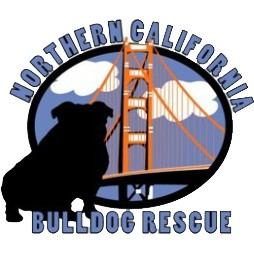Bulldog Rescue