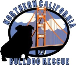NorCal Bulldog Rescue