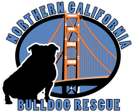NorCal Bulldog Rescue | Help Us Rescue English Bulldogs